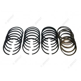 RING 020 (SET FOR 6 PISTONS)