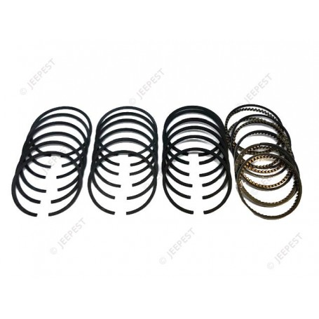 RING 050 (SET FOR 6 PISTONS)