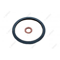 GASKETS SET FUEL FILTER