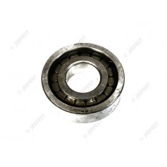 BEARING PINION SMALL AXLE BANJO 1306