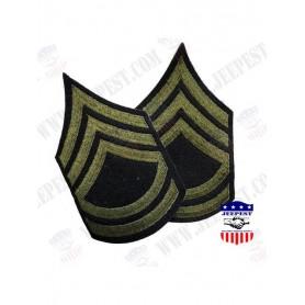 GRADES MASTER SERGEANT (M/SGT)